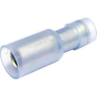 Bullet receptacle 1.5 mm² 2.5 mm² Pin diameter: 5 mm Insulated Blue (transparent) Cimco 180312 1 pc(s)