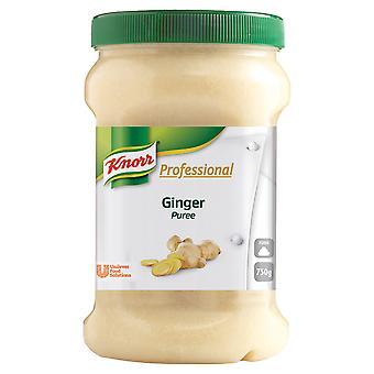 Knorr-Ingwer-Püree
