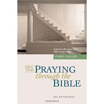 O livro de um ano de rezar através da Bíblia (Bíblia de um ano)