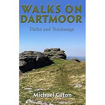 Walks on Dartmoor: Paths and�Trackways