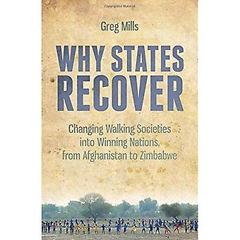 Why States Recover: Changing Walking Societies into Winning Nations, from Afghanistan to Zimbabwe