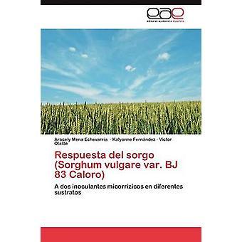 Respuesta del sorgo Sorghum vulgare var. BJ 83 Caloro by Mena Echevarra Aracely