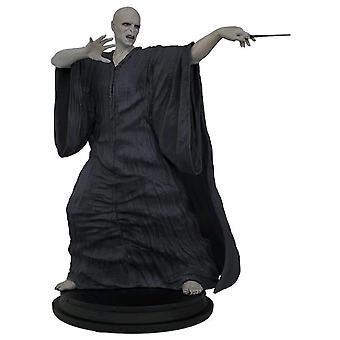 Harry Potter Voldemort 8