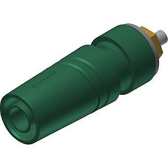 Prise jack de SKS Hirschmann SAB 2640 LK Au Safety Socket, diamètre de l'axe vertical vertical: 4 mm vert 1 PC (s)