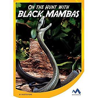 Sur la chasse avec des Mambas noirs (sur la chasse avec animaux prédateurs)