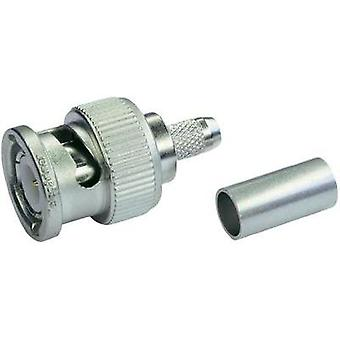 BNC connector Plug, straight 75 Ω Telegärtner J01002A1288Y 1 pc(s)
