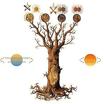 John Zorn - transmigratie van de Magus [CD] USA import
