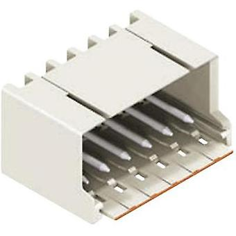Pin enclosure - PCB 2092 Total number of pins 5 WAGO 2092-1425 Contact spacing: 5 mm 1 pc(s)