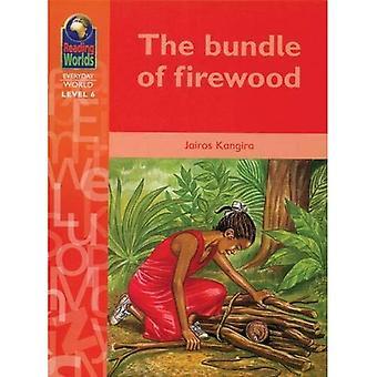 Kofi's Special Sticks (Reading Worlds - Everyday World - Level 6)