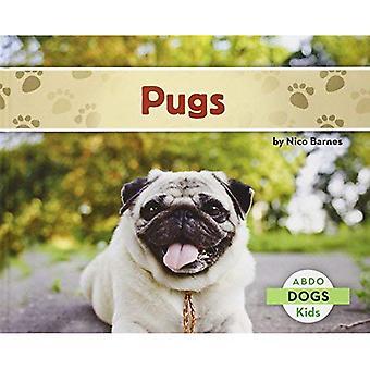 Pugs (Abdo Kids: Dogs)