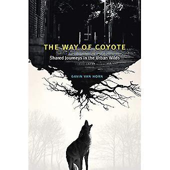 De manier van Coyote: reizen in de wildernis stedelijke gedeeld