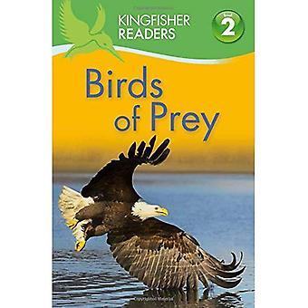 Birds of Prey (Kingfisher lezers: niveau 2)