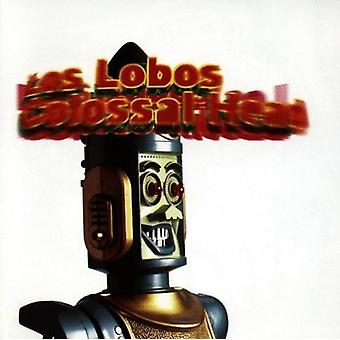 Los Lobos - Colossal Head [CD] USA import