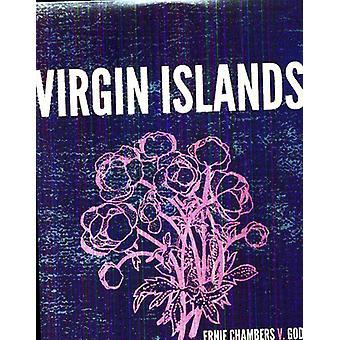 Virgin Islands - Ernie Chambers V. God [Vinyl] USA import