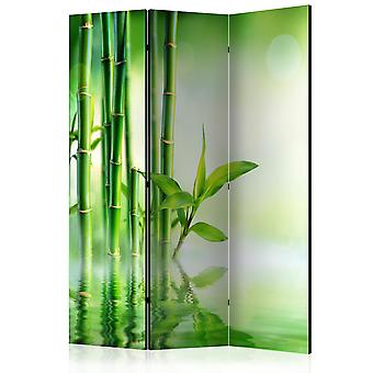 Room Divider - Green Bamboo [Room Dividers]