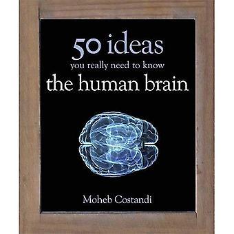 50 idées de cerveau humain que vous avez vraiment besoin de savoir (50 idées vous devez vraiment savoir série)