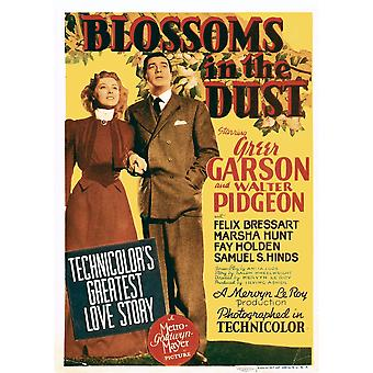 Blossoms In The Dust From Left Greer Garson Walter Pidgeon On Midget Window Card 1941 Movie Poster Masterprint
