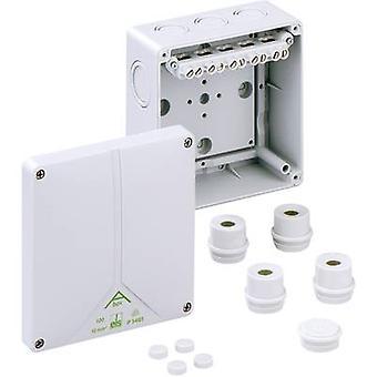 Spelsberg 81041001 Joint box (L x W x H) 140 x 140 x 79 mm Grey IP65