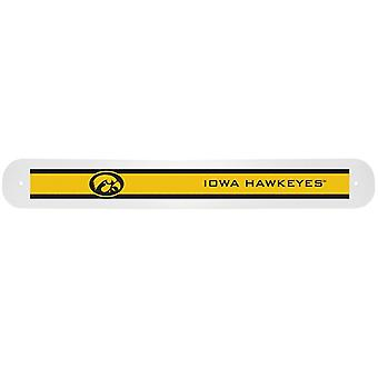 Iowa Hawkeyes NCAA viaggio spazzolino caso