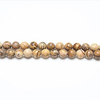 Strand 38+ Pale Beige Picture Jasper 10mm Plain Round Beads GS1647-4