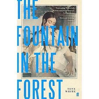Fontänen i skogen vid fontänen i skogen - 9780571336