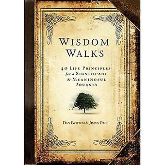 WisdomWalks: 40 principes de vie pour un voyage important & significatif