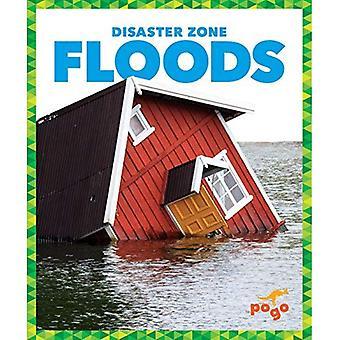 Floods (Disaster Zone)