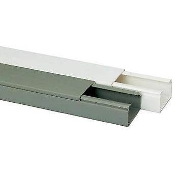 Conducto (L x W x H) 2000 x 40 x 25 mm Heidemann 09962 1 PC blanco puro