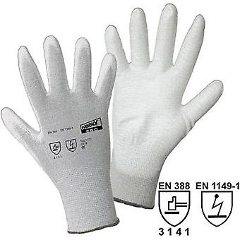 worky 1171 Size (gloves): 8, M