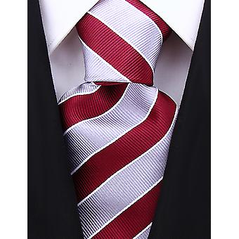 Scott Allan Mens College Striped Necktie