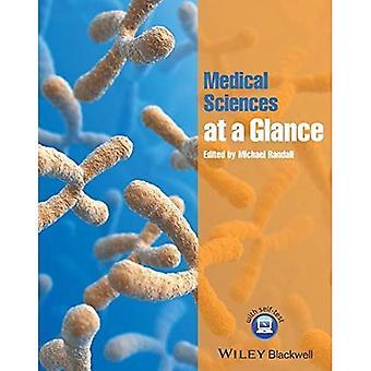 Medizinischen Wissenschaften auf einen Blick