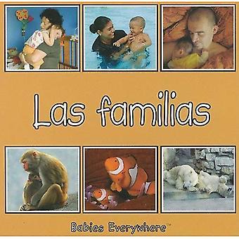 Families (Babies Everywhere Series)
