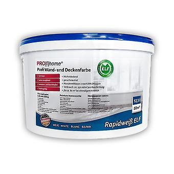 Interior wall paint Profhome 300-32