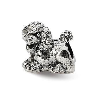 925 Sterling Argent Poli Antique finition Reflections Poodle Bedd Charm