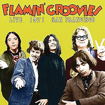 Flamin' Groovies - Live in San Francisco 1973 [Vinyl] USA import