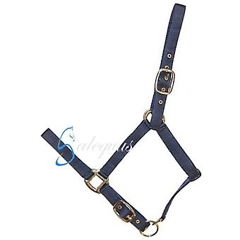 Galequus Double Mini Black Nylon Bridle