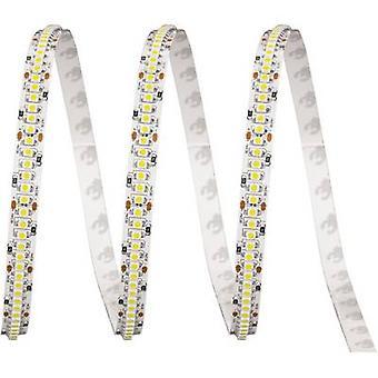 ledxon LFBHL-SC625-24V-6S42-20 9009060 LED strip + solder lugs 24 V 2.5 cm Red