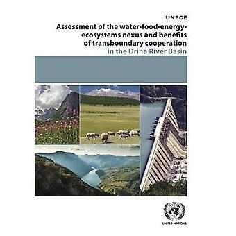 Valutazione dell'acqua-cibo-energia-ecosistemi Nexus e benefici della cooperazione transfrontaliera nel bacino del fiume Drina (ECE acqua serie)