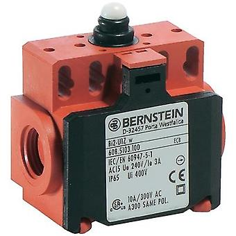 Limit switch 240 Vac 10 A Tappet momentary Bernste