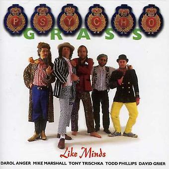 Psychograss - Like Minds [CD] USA import