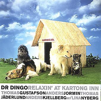 Dr. Dingo - Relaxin' o import USA Kartong Inn [CD]