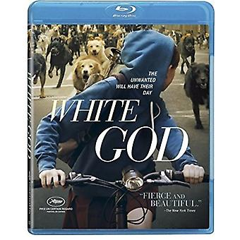 Witte God [BLU-RAY] USA import