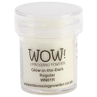 Wow! Embossing Powder 15Ml Glo In The Dark Wow Wn01r