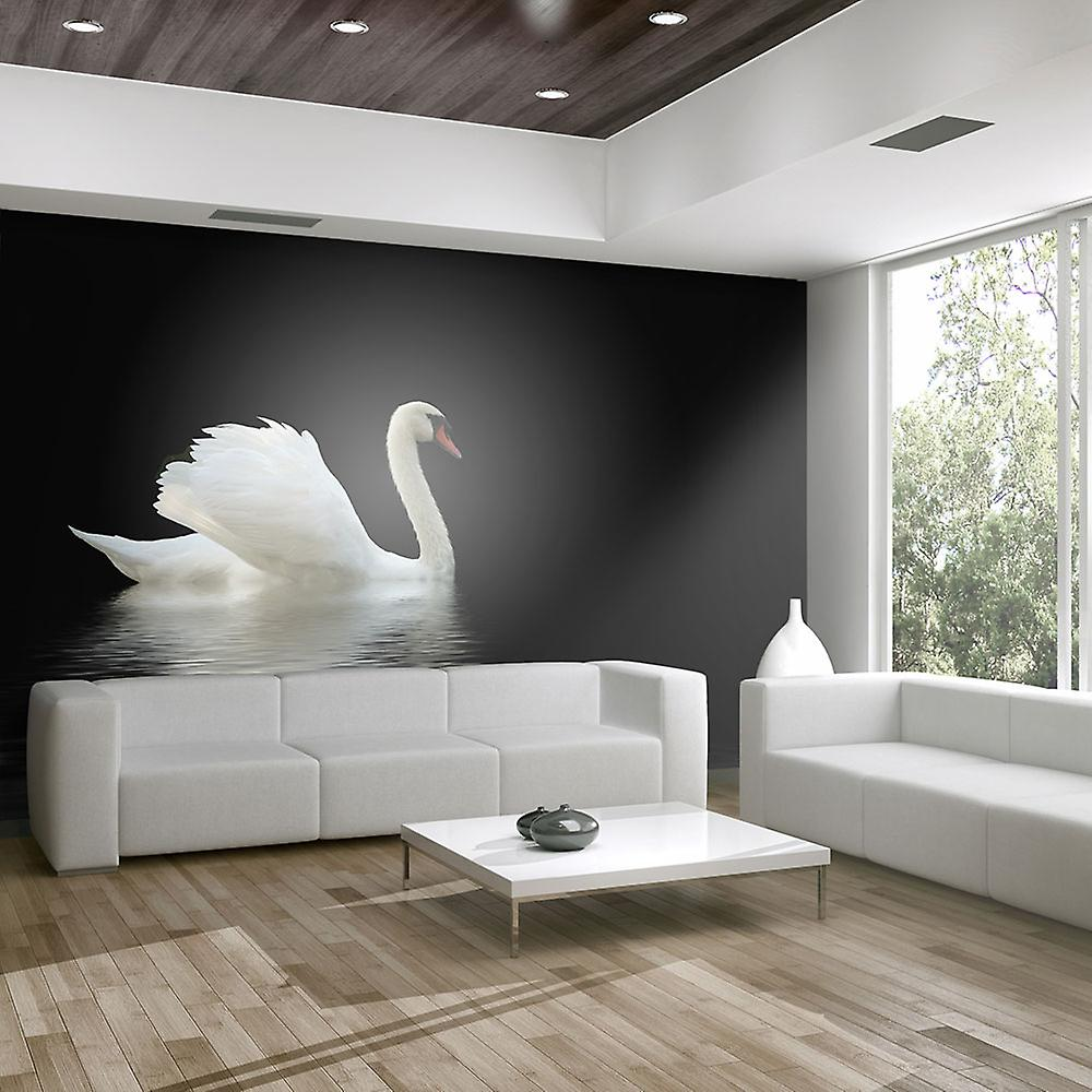 Papier peint - cygne (noir et blanc)