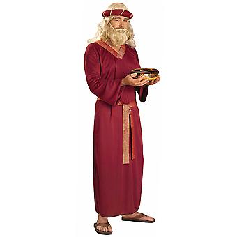 Three Wiseman Magi Robe Religious Biblical Times Christmas Easter Mens Costume