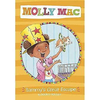 Molly Mac Pack A of 4 (Molly Mac)