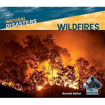 Wildfires by Rochelle Baltzer - 9781617830365 Book