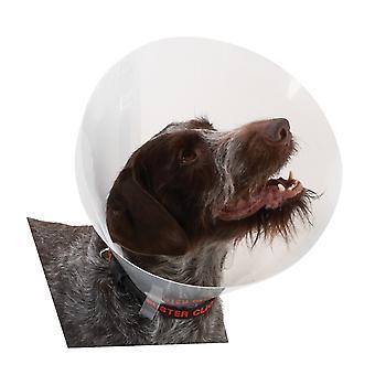 Buster Classic Collar Transparent 12.5cm 10pc