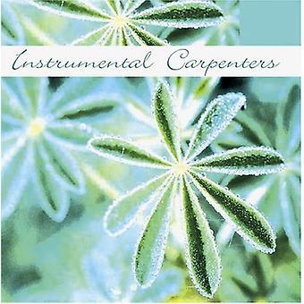 Instrumental tømrere - instrumentale tømrere [CD] USA importerer