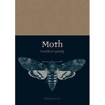 Motte von Matthew Gandy - 9781780235851 Buch